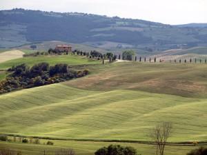 Landschaft in Montalcino - Pixabay